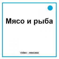 мясо и рыба на английском видео