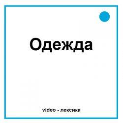 одежда на английском видео